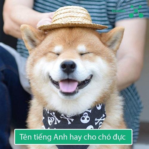 Ten tieng Anh hay cho cho duc