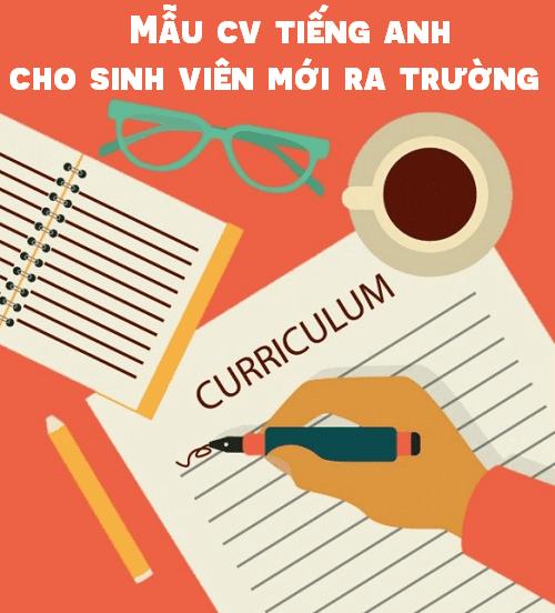 CV mẫu tiếng Anh cho sinh viên mới ra trường