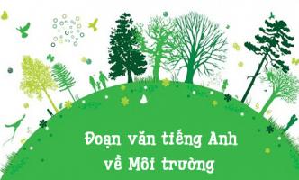 Bỏ túi ngay đoạn văn tiếng Anh về môi trường có dịch